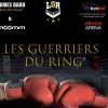 affiche LES GUERRIERS DU RING - GALA DE KICK-BOXING (K1 RULES)